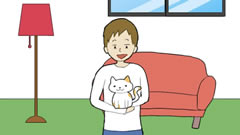我的猫咪在哪儿宣传视频