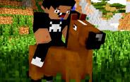 【我的世界】熊孩子强行骑马,结局很惨!