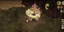 大王单机版蛤蟆视频mod单人击杀教程视频_4饥荒胃毒菌吃货图片