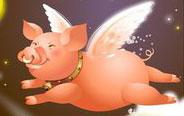 会飞的猪,逗比的主人
