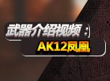 生死狙击武器介绍:AK12凤凰