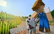 我的世界:愉快的农村生活