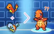 小火龙和杰尼龟融合进化?
