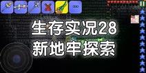 泰拉瑞亚生存实况28:新地牢探索【星皓】
