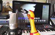 凭什么尖叫鸡也会唱歌了!