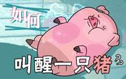 叫醒一只猪真的没那么容易