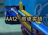 宝哥-你没见过的AA12-放逐