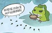 小蝌蚪找妈妈的真正原因-- 《快把动