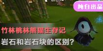 【竹林桃林熊猫生存记】岩石和岩石块的区别?
