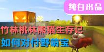 【竹林桃林熊猫生存记】如何对付野萌宝