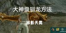 方舟三种大神级驯龙方法 【邪影天晃】解说