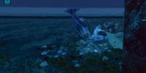 方舟:第一次见野生的大大大鱿鱼!真真的日常