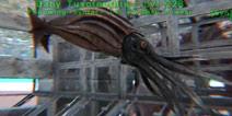 方舟生物介绍第21期:托斯特巨鱿 【黑斑瞪羚】