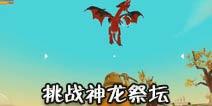 乐高无限挑战神龙祭坛