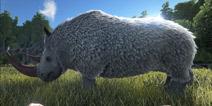 方舟生物介绍第31期:披毛犀