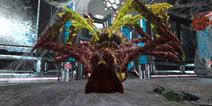 【玩家投稿】地牢蜘蛛洞穴通关过程