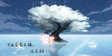 灵猫传宣传PV首发