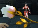 火线精英萧云:玫瑰,银翼测评